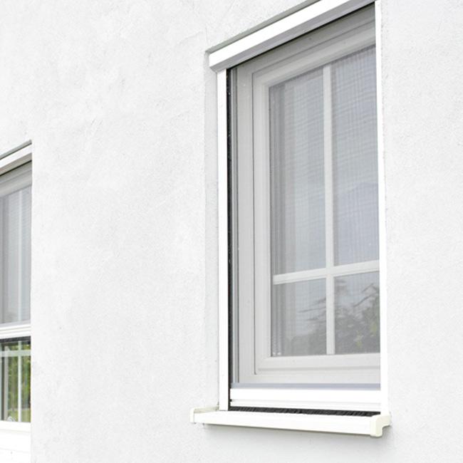 Insektenschutz für Ihre Fenster!